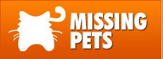 Are you missing your beloved pet? Please click here!