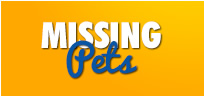Click here for more information on how to locate your missing pet